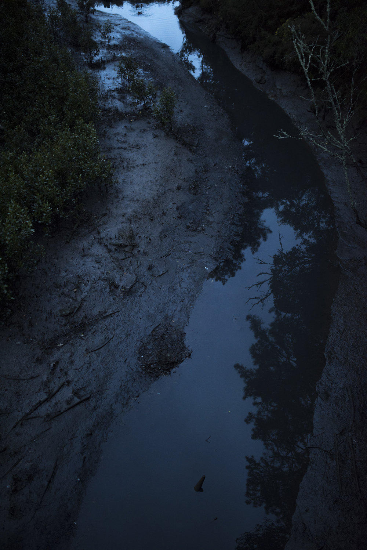 Cox's bay reserve.jpg