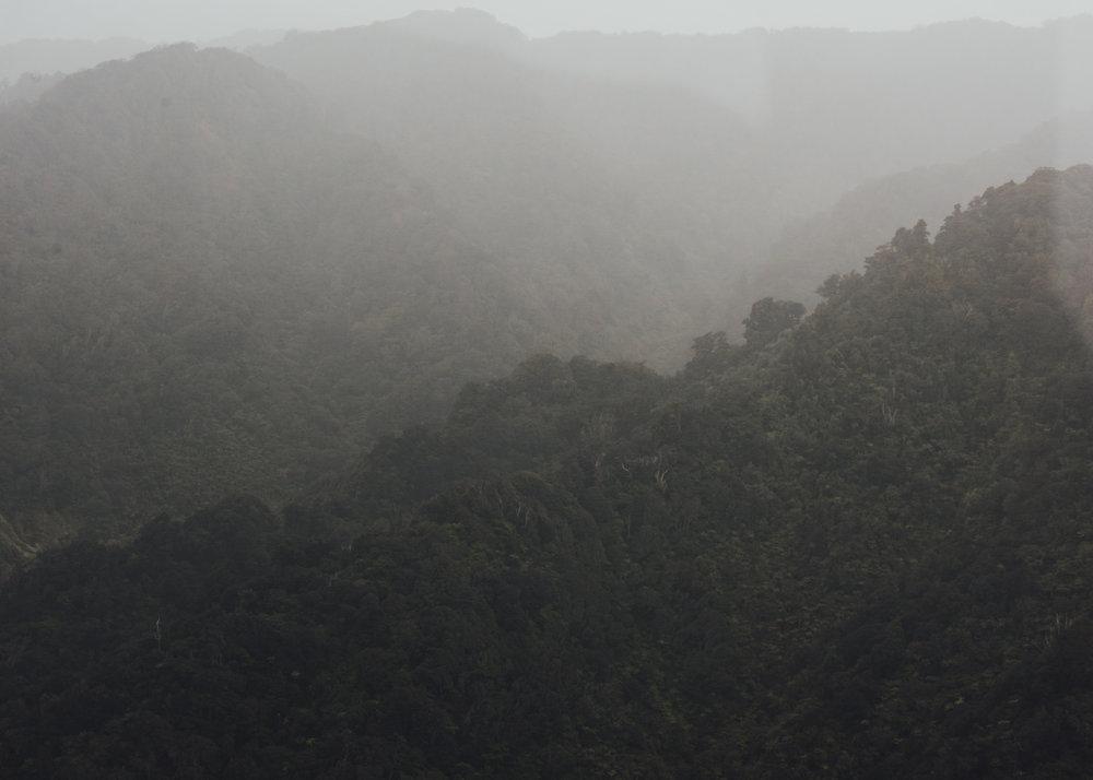 Fiordland_-3.jpg