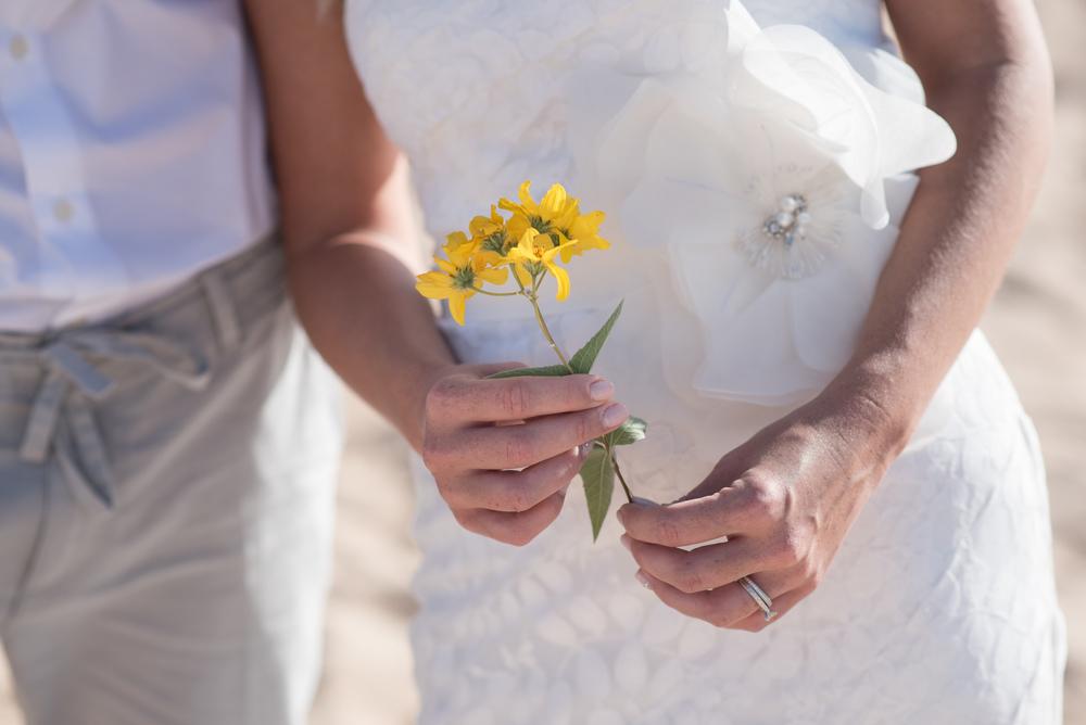 cabo-brides