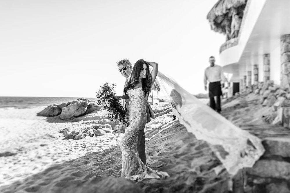 Los-Cabos-Wedding-Photographer-21.JPG