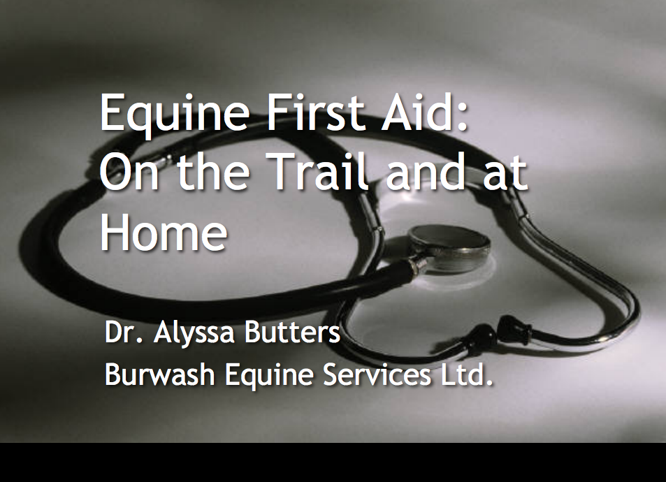 first aid emergency horse equine vet veterinarian doctor Cochrane Calgary Alberta