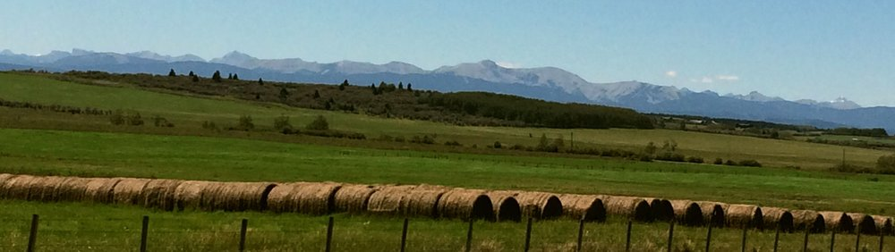 Rocky Mountain view of horse property in Cochrane Alberta