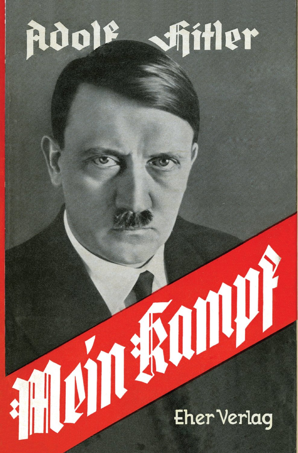 Image result for mein kampf