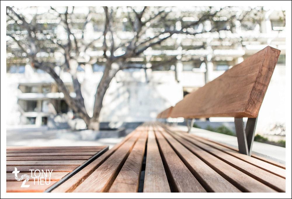Tony_Tieu_CED Courtyard.jpg