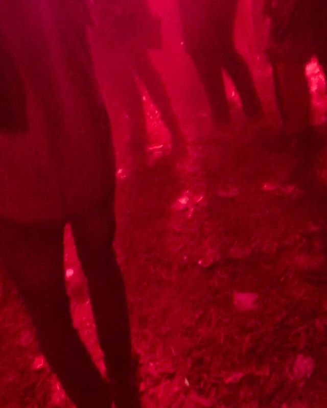 Roskilde Festival #roskildefestival #roskildefestival2018 #todayfilm #festival #jesperbloksgaard #red #couleurs