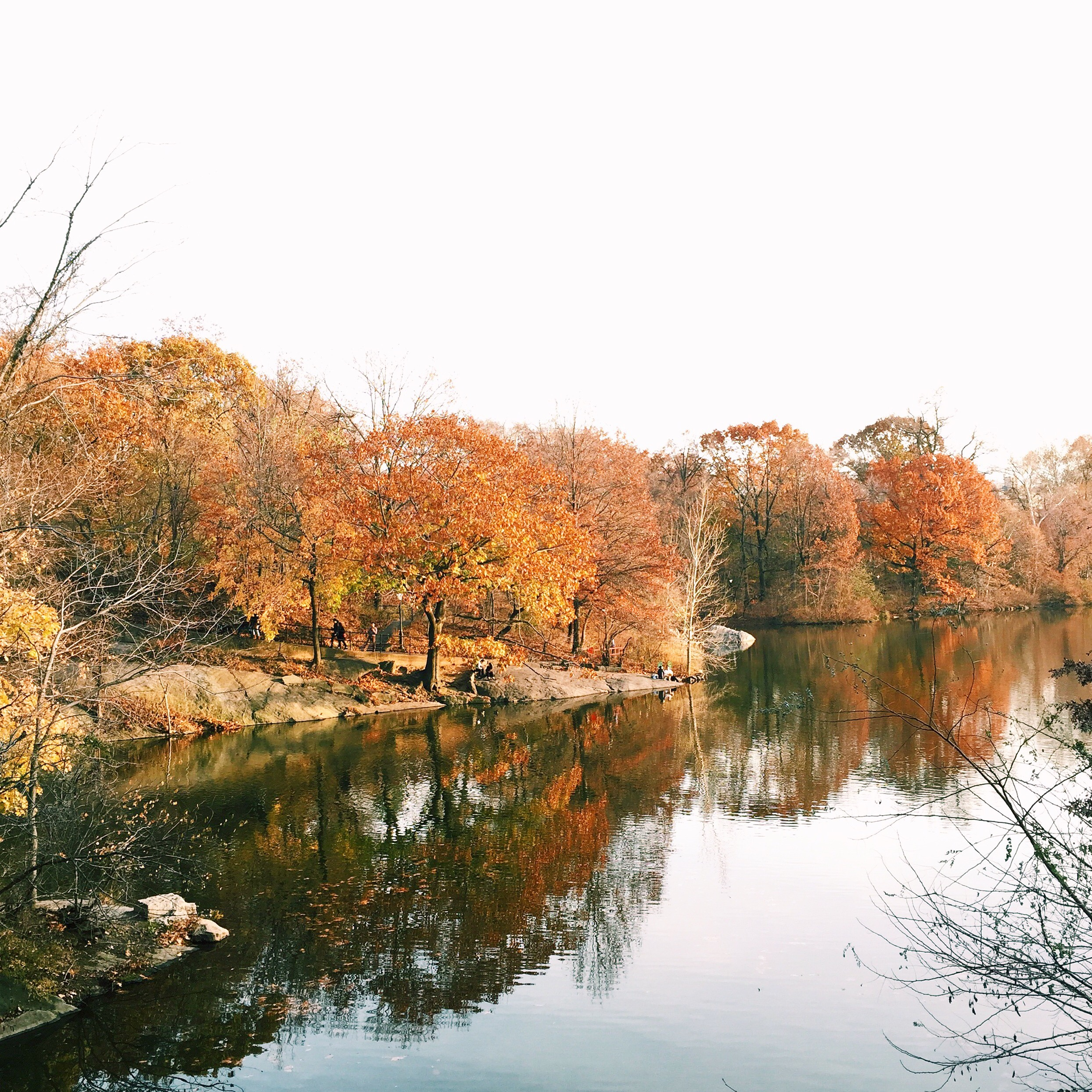 More gorgeous views from Central Park...