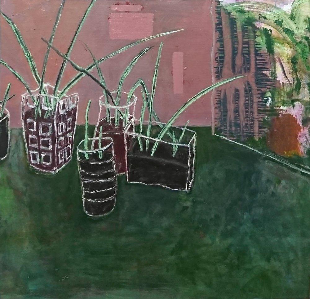 植物待領|Plants to be Adopted