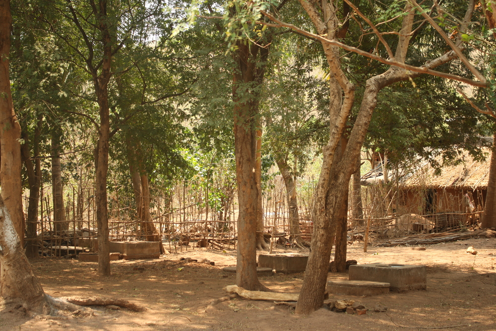 Odisha 'toilet graveyard', unfinished govt toilets April 2013.  Credit: Praveena Sridhar