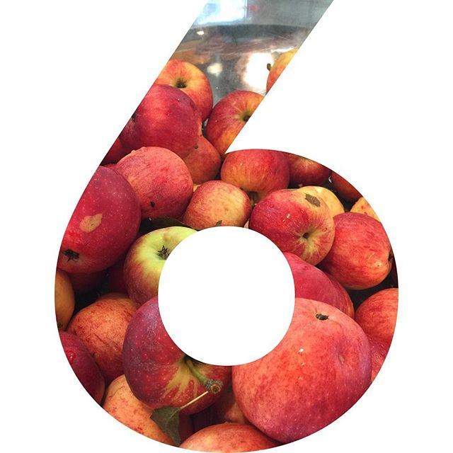 6 more days to vote! Just takes 30 seconds and could make a world of difference for Apples to Applesauce and the community that we serve. Head over to Advantiscu.org and cast your vote for Apples to Applesauce ________________________________________________________ #applestoapplesauce #endfoodwaste #endchildhunger #nonprofit #vote #now #glean #harvest #preserve #donate #advantiscreditunion #grant #grow #portland #oregon