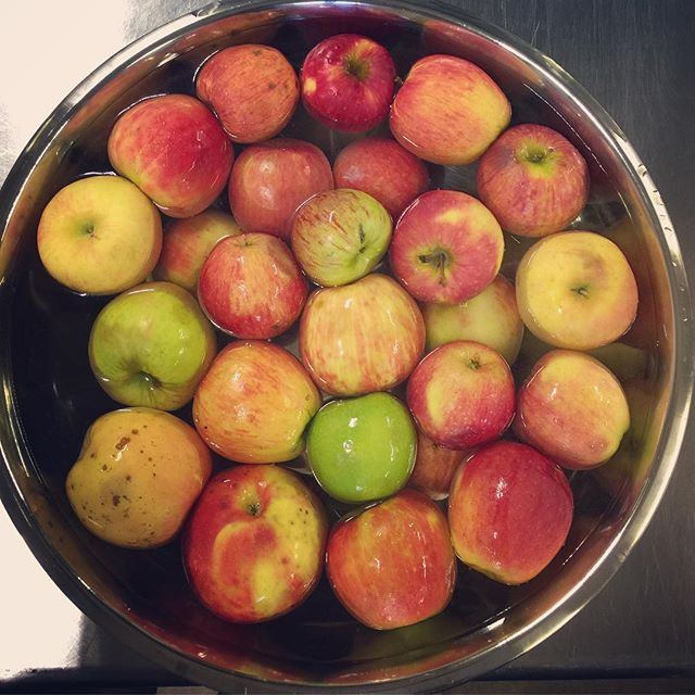Today-bobbing apples in the kitchen. Apples which were slated for the trash which I canned into applesauce! Of course.