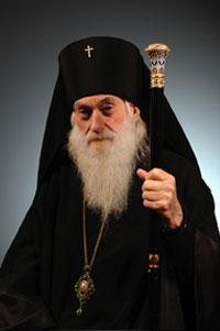 abp.dmitri.jpg