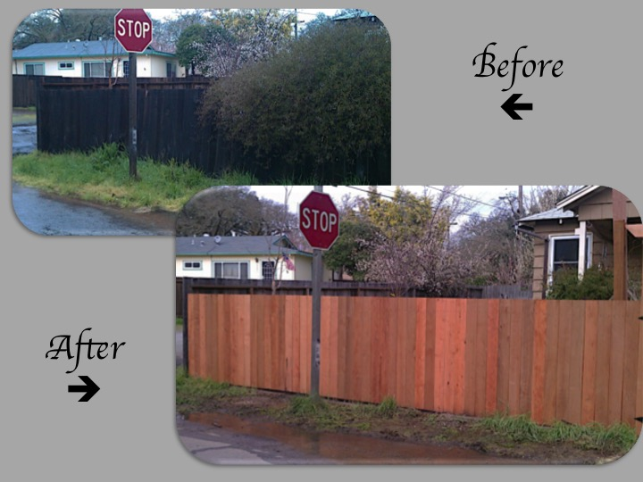 Replace Fence
