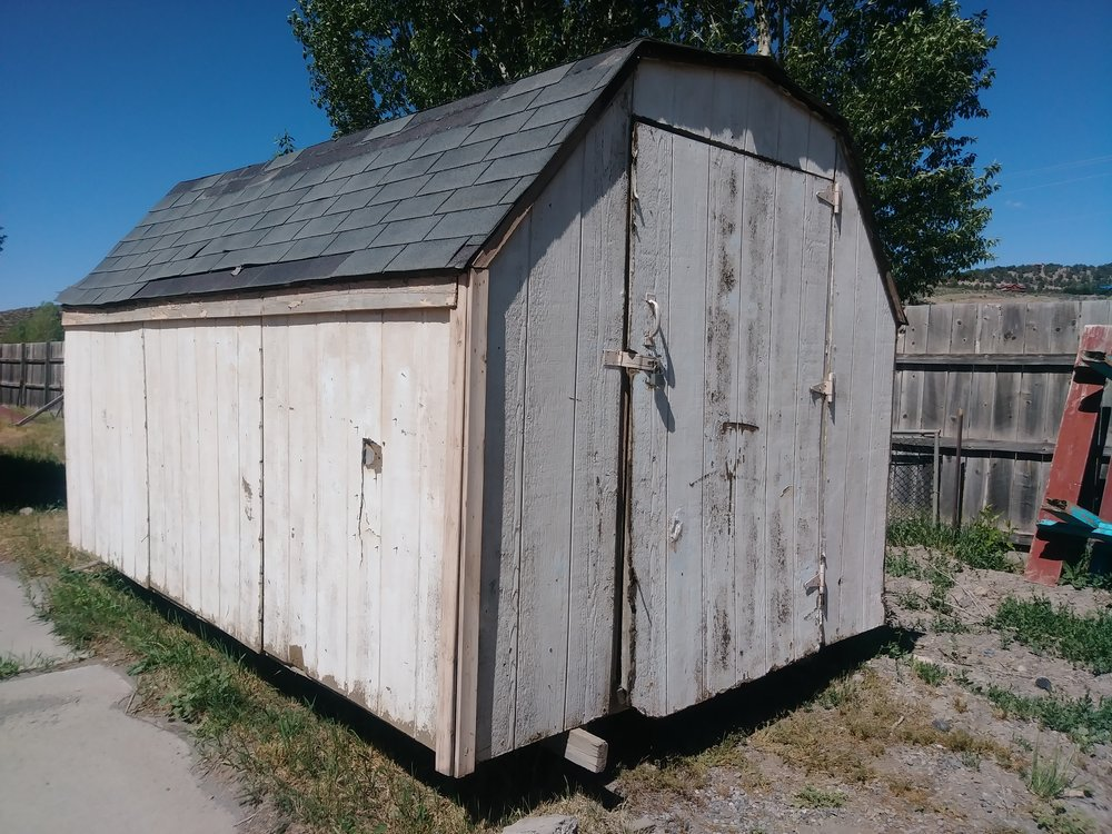 This is our current shed… it is broken down and needs to go!