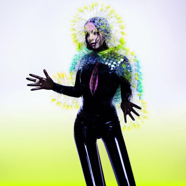artsy: Björk, 'Vulnicura,' 2015, Museum of Modern Art