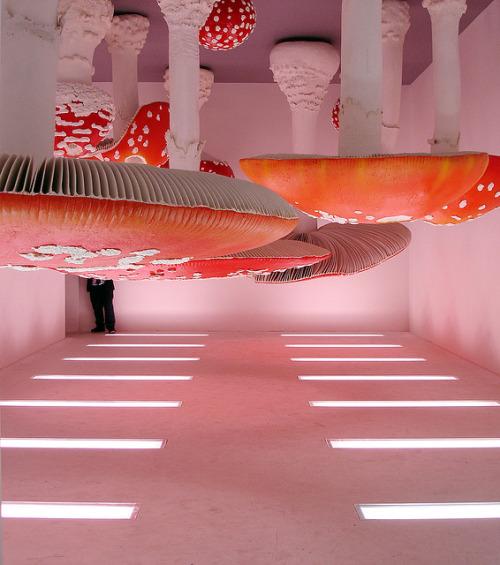 edgina :   Upside-Down Mushroom RoombyCarsten Höller