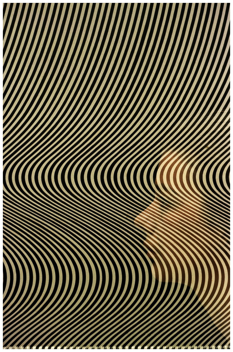 lisa401971 :     Bridget Riley/Tatler cover/1964