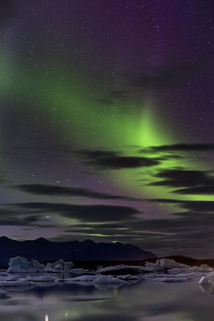 tulipnight: PurpleHaze by Iceland Aurora on Flickr.