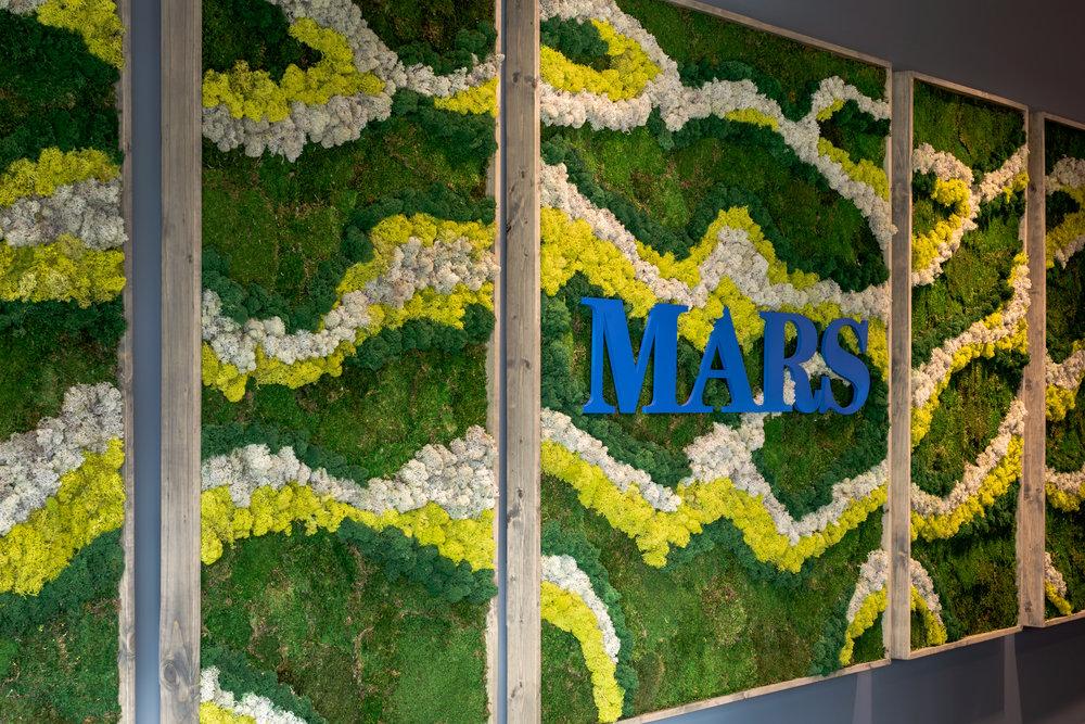 5-Mars.JPG