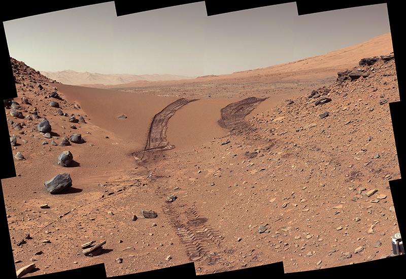 Rover tracks.