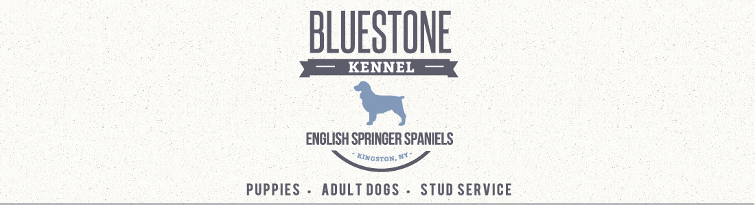 Bluestone Kennel