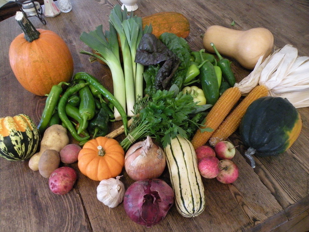 Early October CSA Share