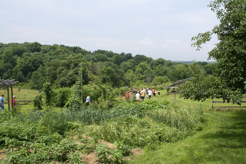 overview of lower garden, on the way to an orchard tour.jpg