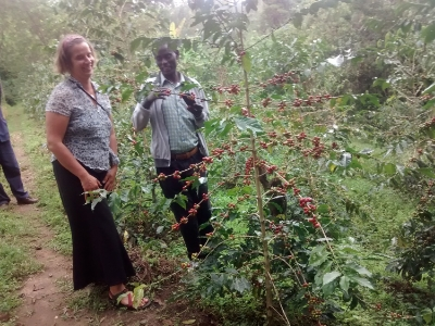 Touring coffee grove at Aregesh Lodge in Ethiopia with Genene, Sidama Region's Bureau of Marketing and Promotion.