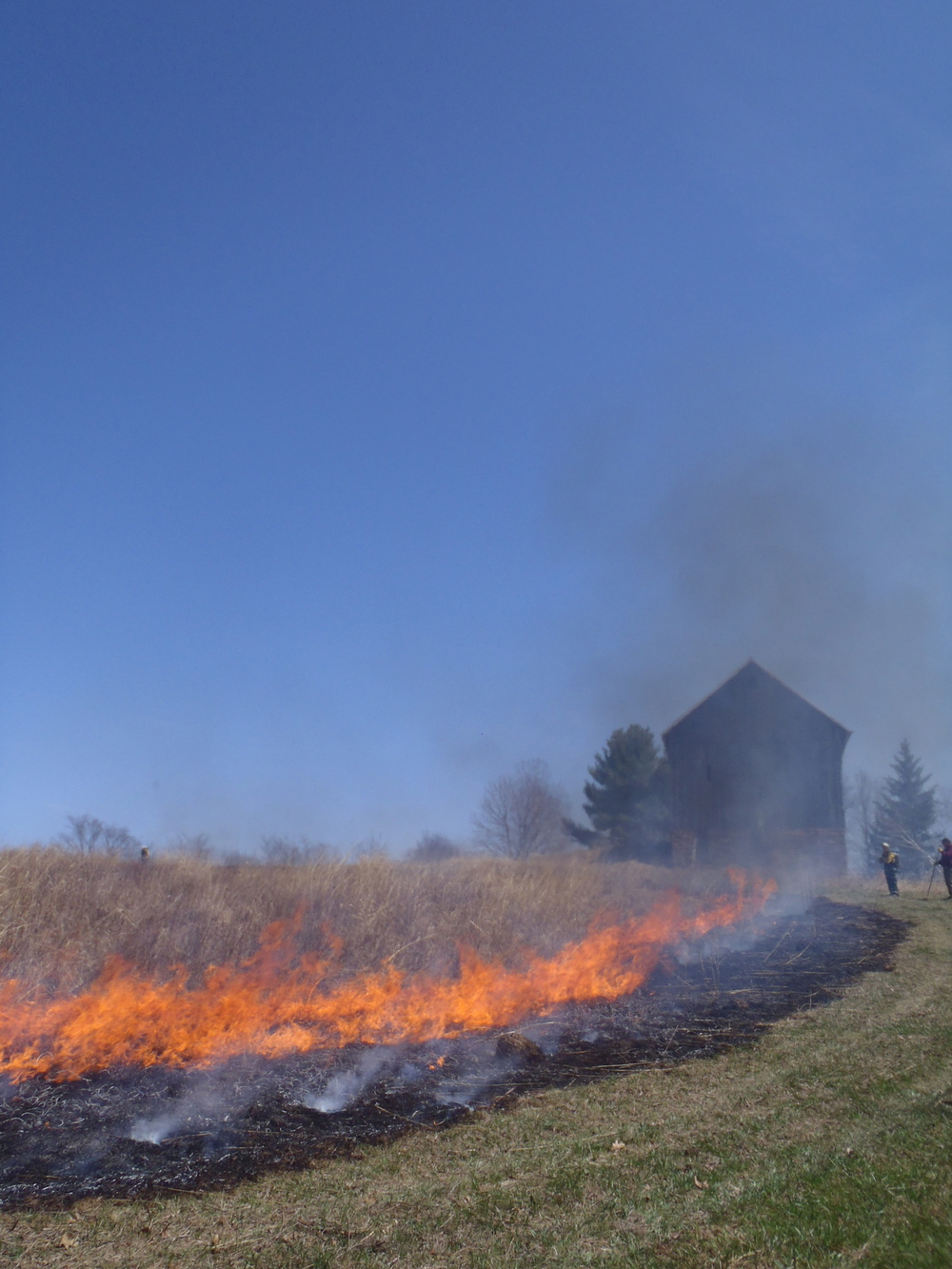 prescribed prairie burn 2014