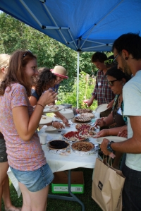 participants sampling fruit pies during Currant Events Fest