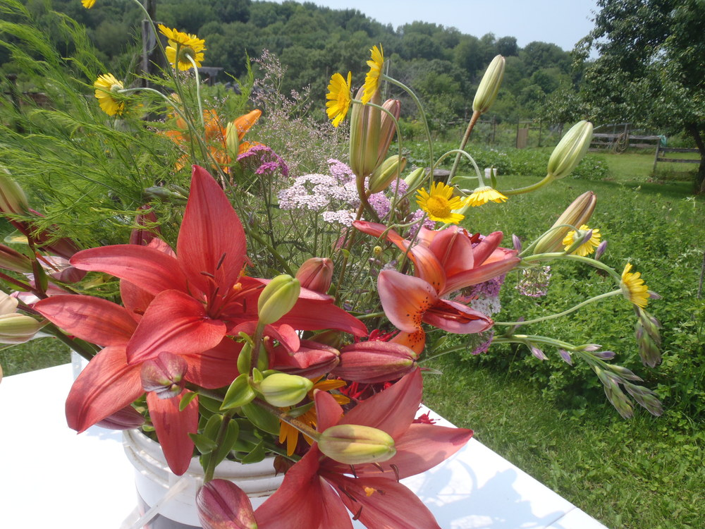 July Lily CSA bouquet
