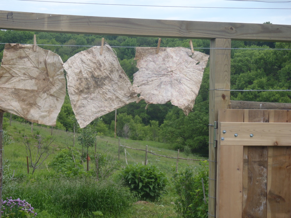 Soil Paintings Hanging outside to dry at the orchard gate. Photo by Erin Schneider