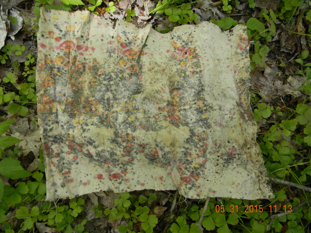 Soil quilt square from Berklund Family forest soil. Arbor Vitae, WI. Photo by Heather Berklund.