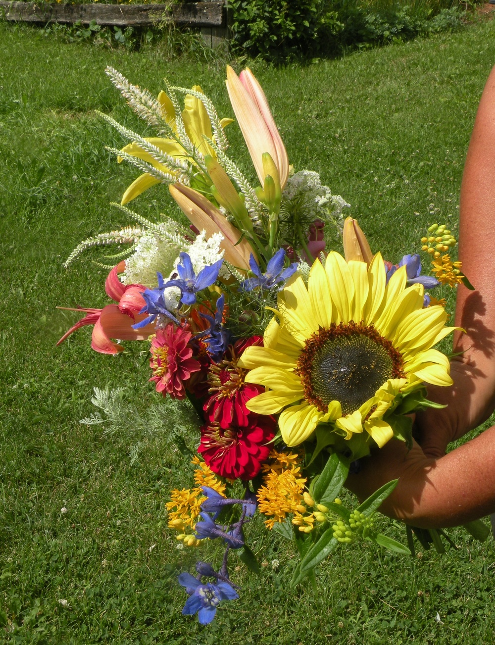 July Flower CSA bouquet. From sunflowers to culver's root, a feast for pollinators abound in the petals. Photo by Rob McClure