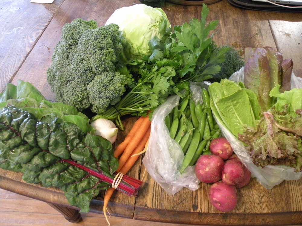 July 4 CSA Share - week 8.jpg