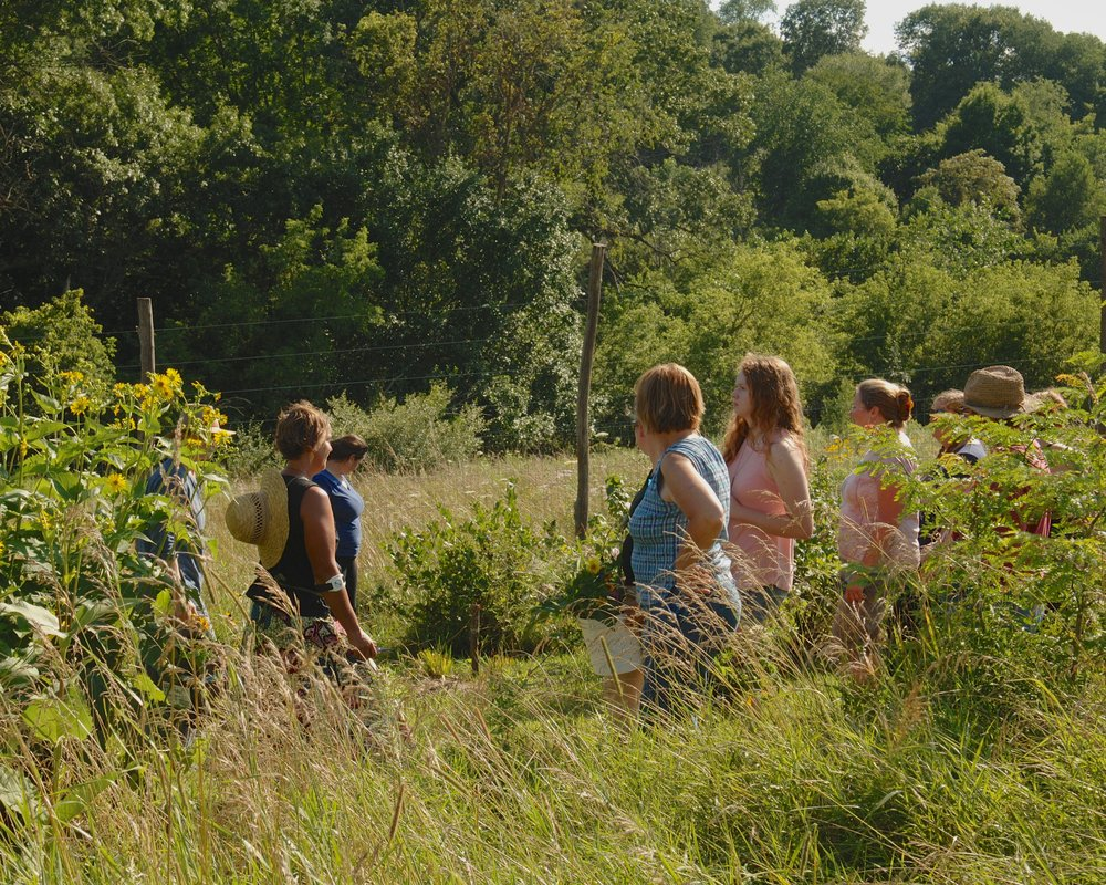 Leading an orchard tour as part of a 2017 Field to Vase workshop. Growing the community of farmer florists alongside fruit/flowers is part of our farm's mission. Photo by Betsy Haynes Photography