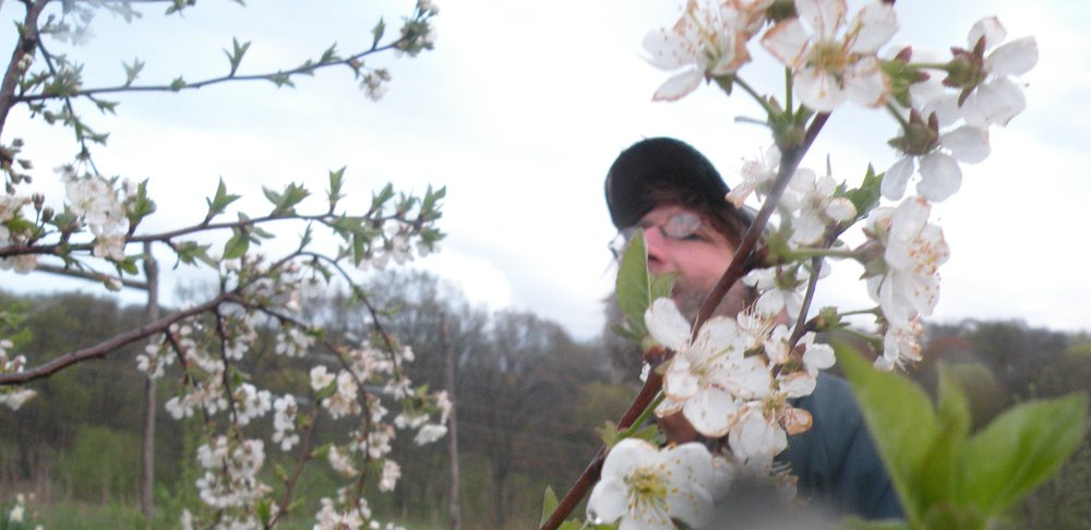 Rob assessing the cherry blossoms in May. Photo by Erin Schneider