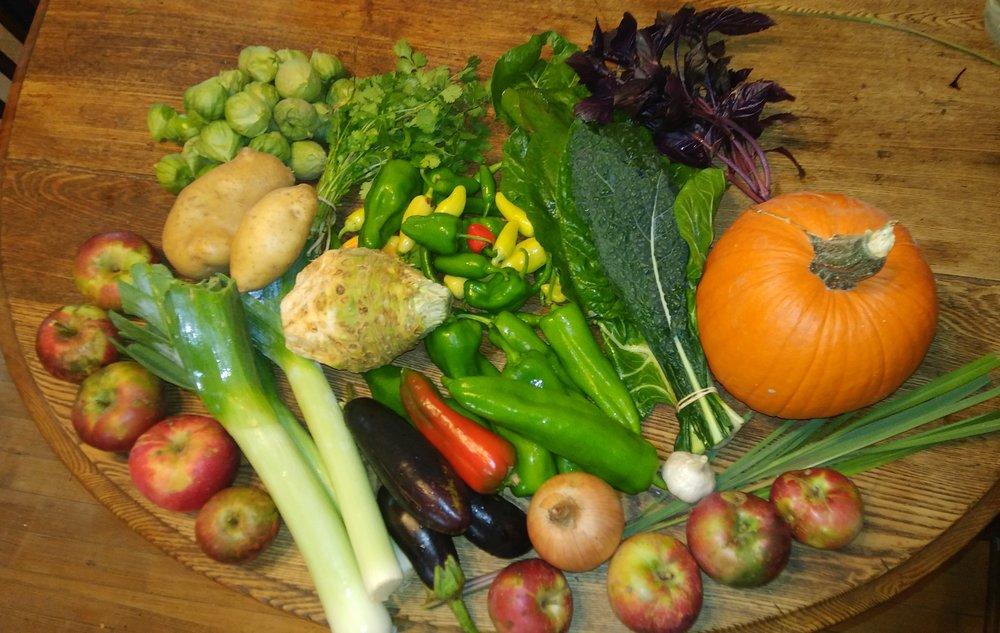 week 19 Veggie CSA 9 - 29 - 18.jpg