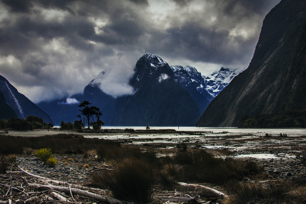 Milford Sound_Steven Holleran_Cinematographer