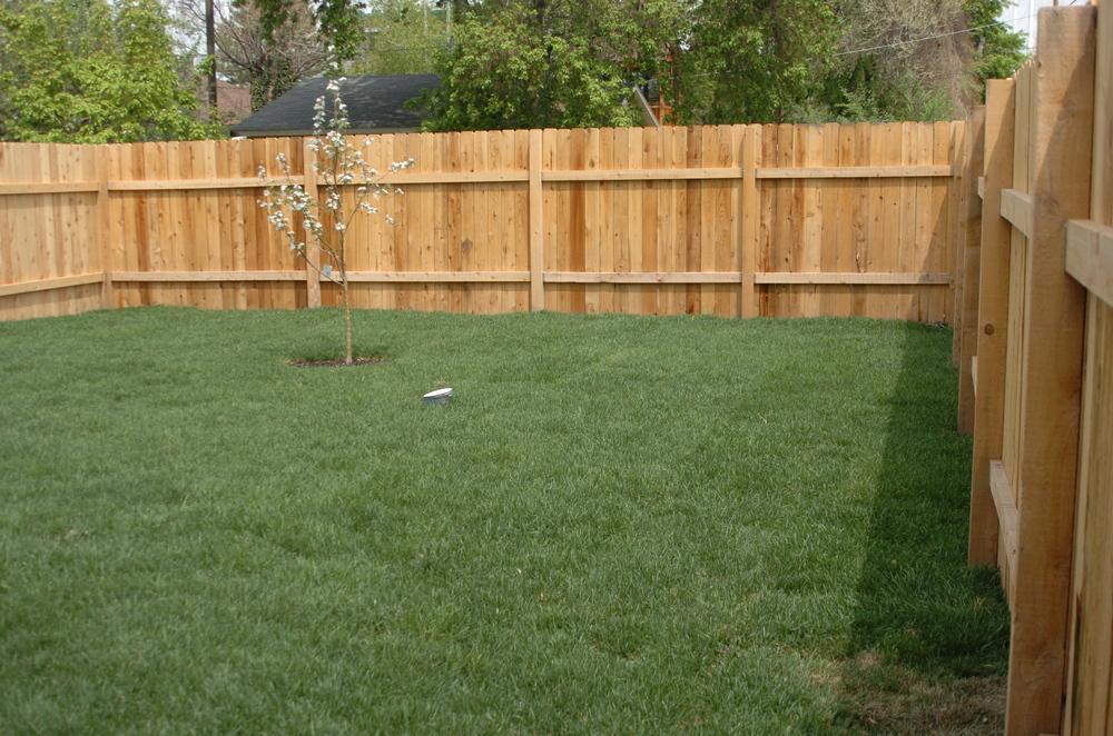 Merrimac Backyard