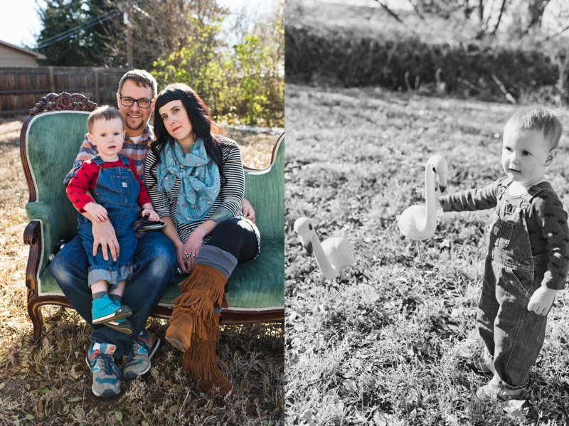 A hip family on an antique blue sofa and an adorable child with plastic flamingos in Loveland Colorado.  Film family portraits by Sonja Salzburg of Sonja K Photography.