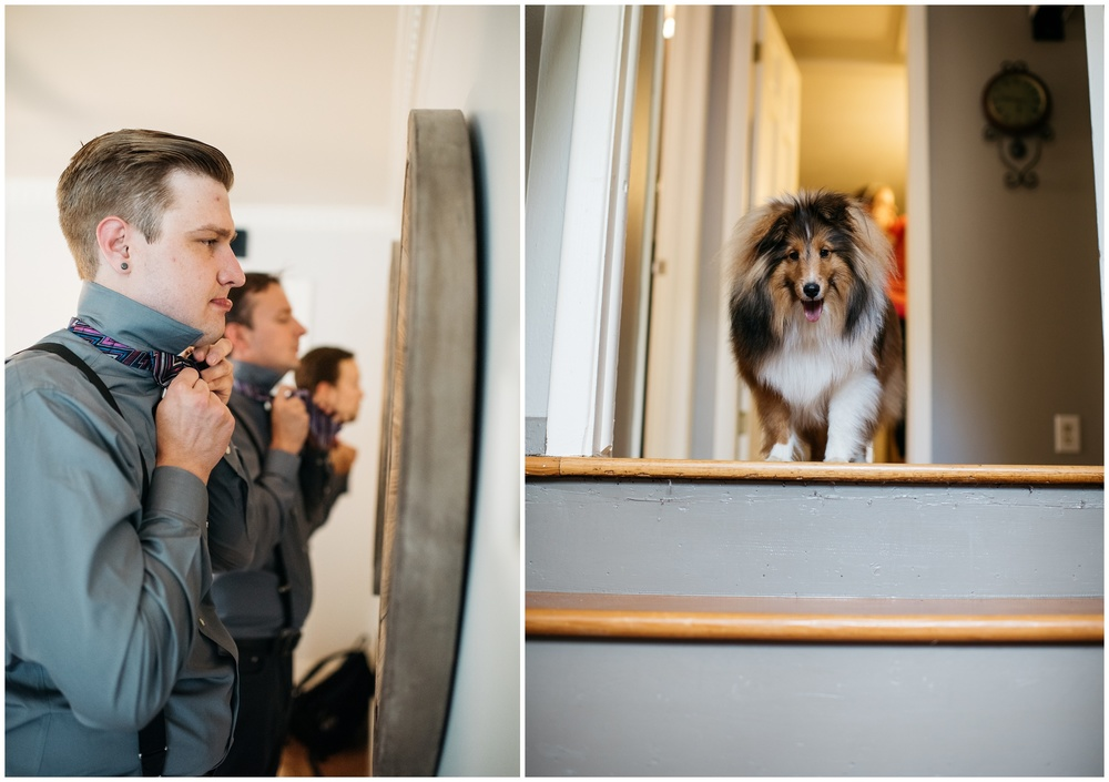 Groomsmen tying their bowties while a corgi looks on from upstairs. Wedding photography by Sonja Salzburg of Sonja K Photography.