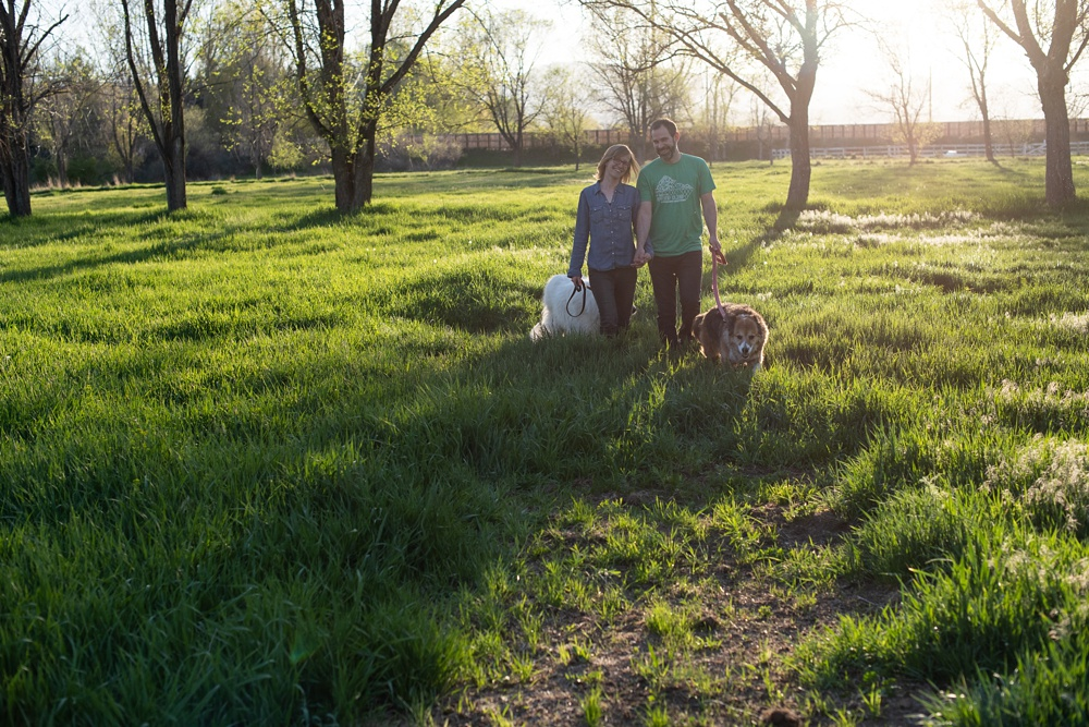 A family walks with their dogs at the Poudre River Stables in Fort Collins, Colorado. Family portrait photography by Sonja Salzburg of Sonja K Photography.