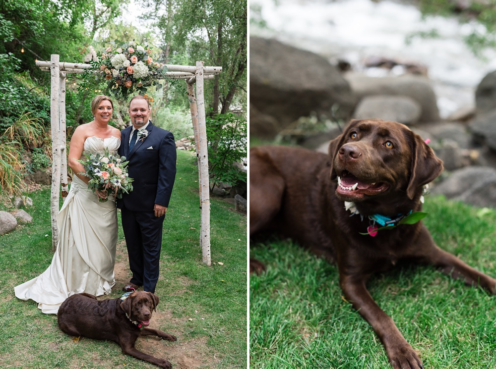 A bride and groom with their dog on their wedding day at Wedgewood Weddings on Boulder Creek outside of Boulder, Colorado. Wedding and pet portrait photography by Sonja Salzburg of Sonja K Photography.