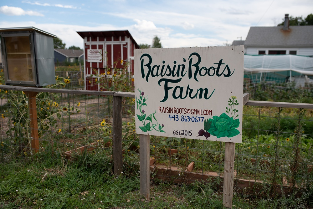 The sign at the front of Raisin' Roots Farm at the Fortified Collaborations 3 Forks Progressive Farm Dinner. Event and food and beverage photography by Sonja Salzburg of Sonja K Photography.