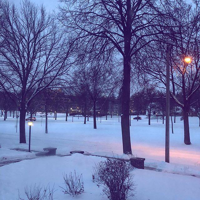 Blue morning snow.  #snow #minneapolis #winter #mcadmfa #makemcad