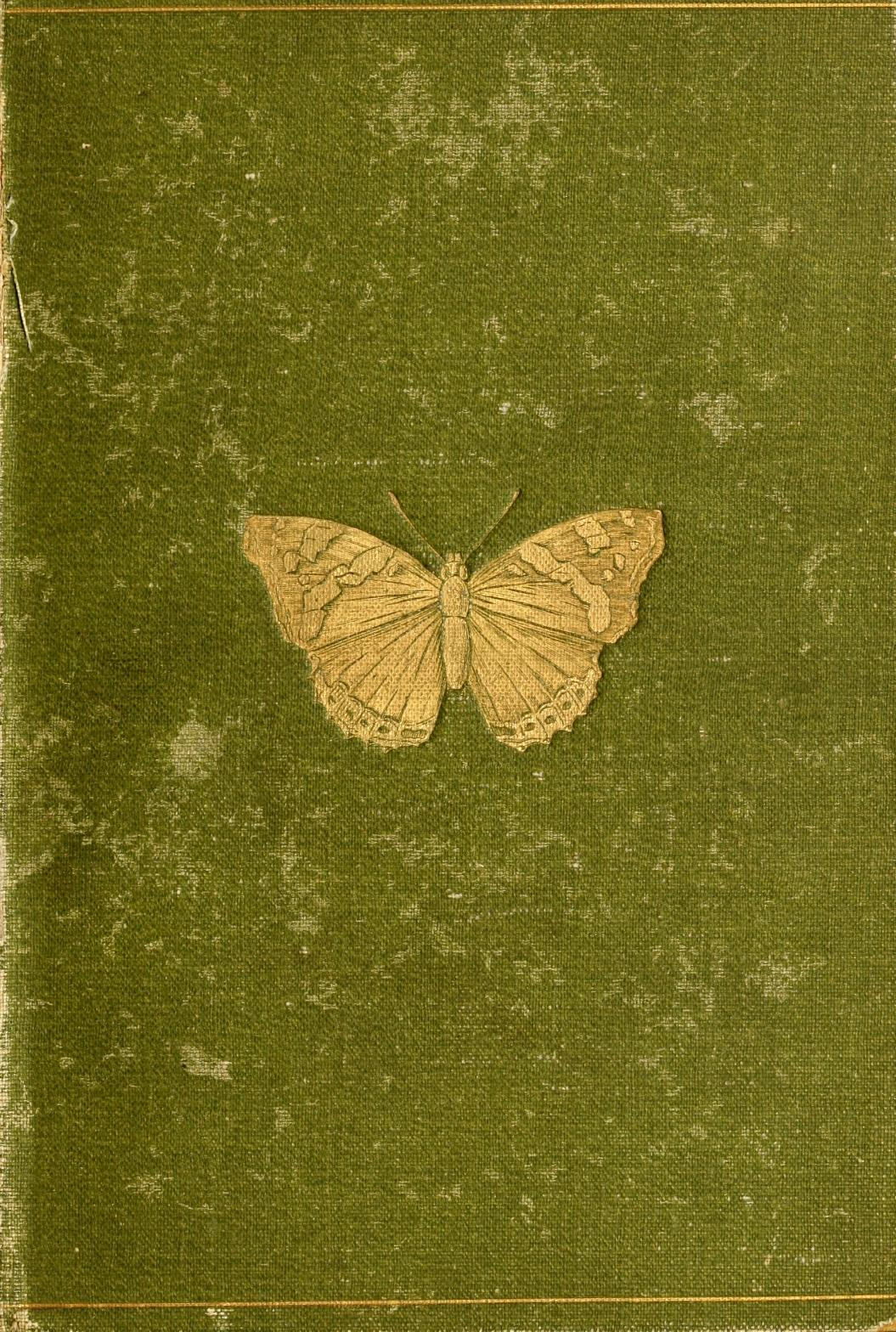 heaveninawildflower: Butterflies and Moths (British) by W. Furneaux                 Published 1894 by Longmans, Green, and Co. archive.org