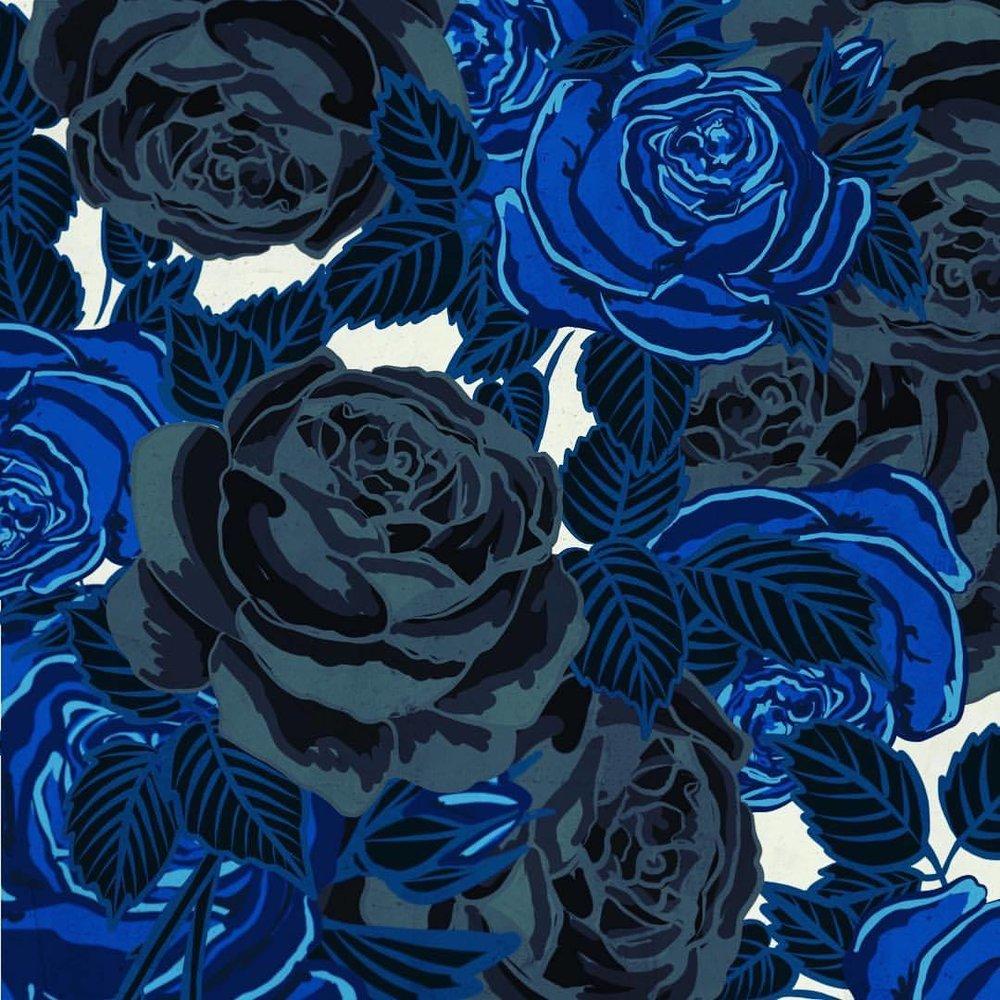 tumblr_p42fa43DVo1rxfc1oo1_1280.jpg