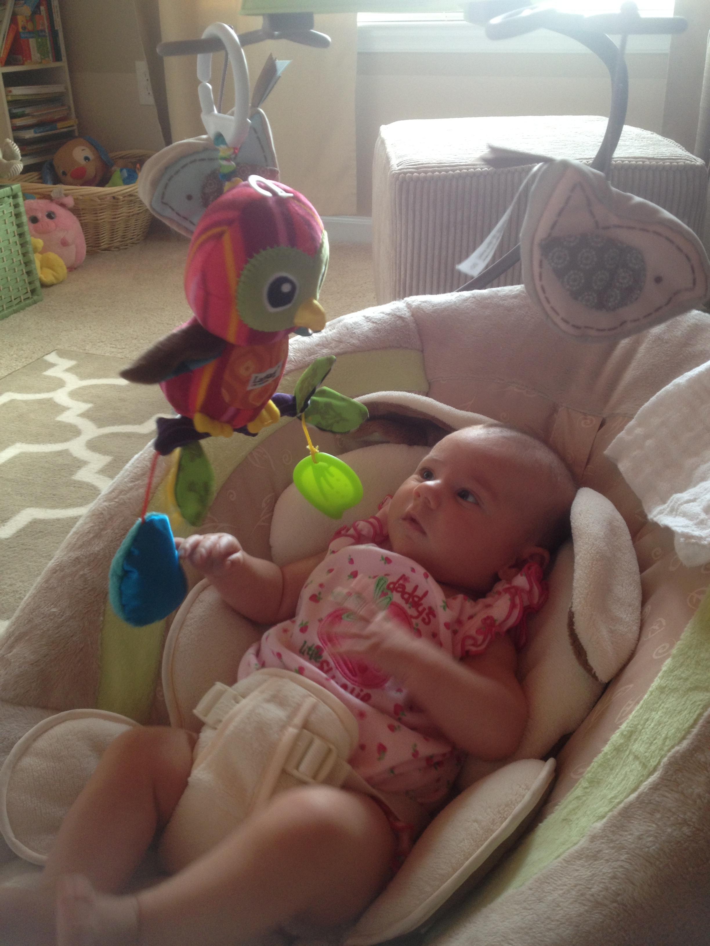 Charlotte eyeing her owl toy suspiciously