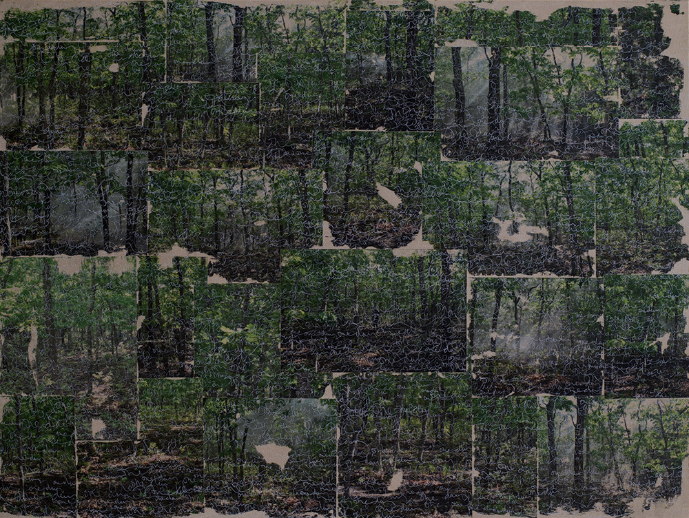 a wooded escape on the same island , 2015  acrylic, ink transfer and oil on wood panel  30 x 40 inches