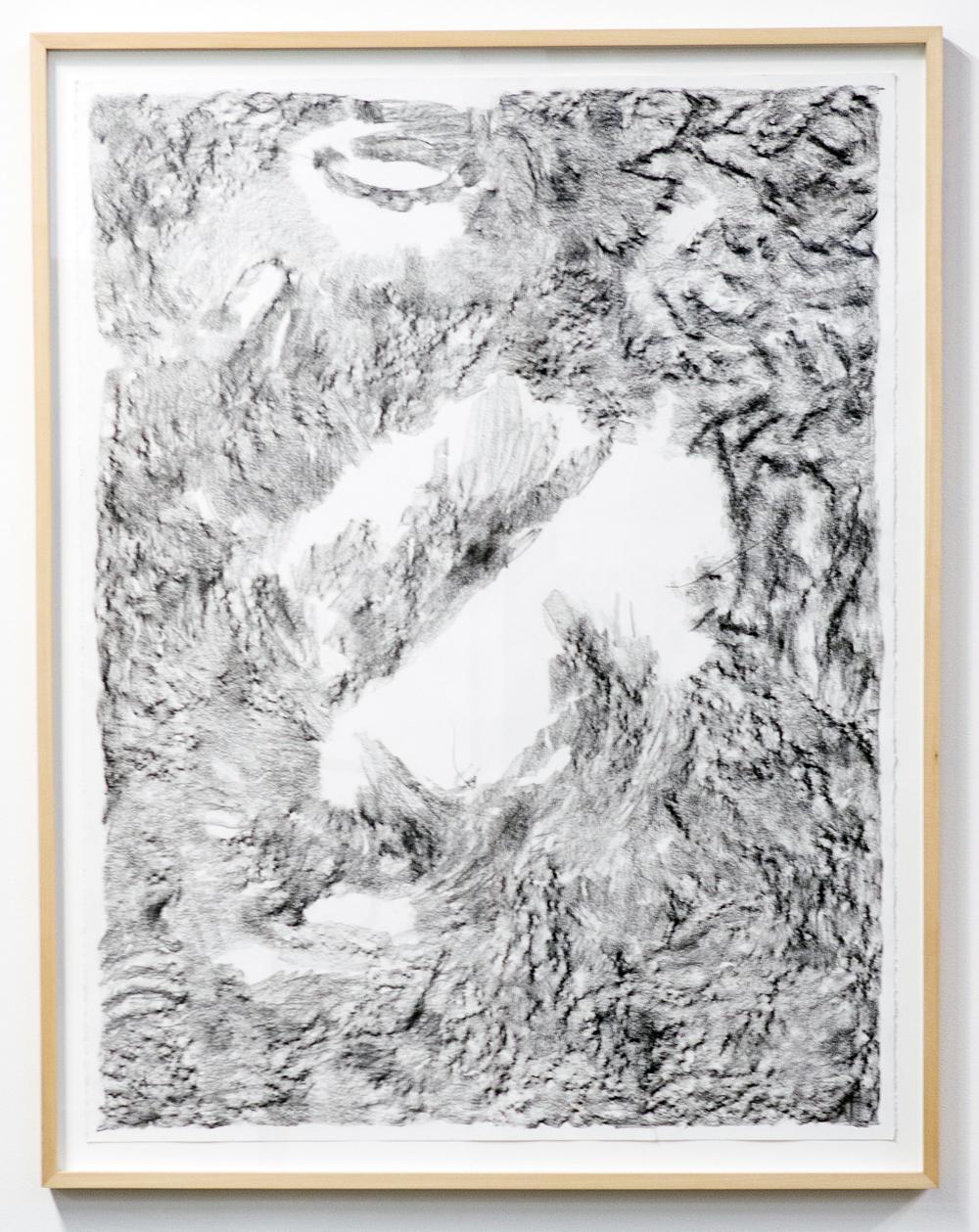 MLSL_01_ElysianPark, 2015 Conté on rag paper Paper 49.75 x 38.5 in (126.37 x 97.79 cm) Framed 52.25 x 42.5 in (132.72 x 107.95 cm)